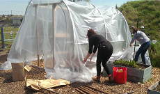 New Poly Tunnel at Horse Savvy