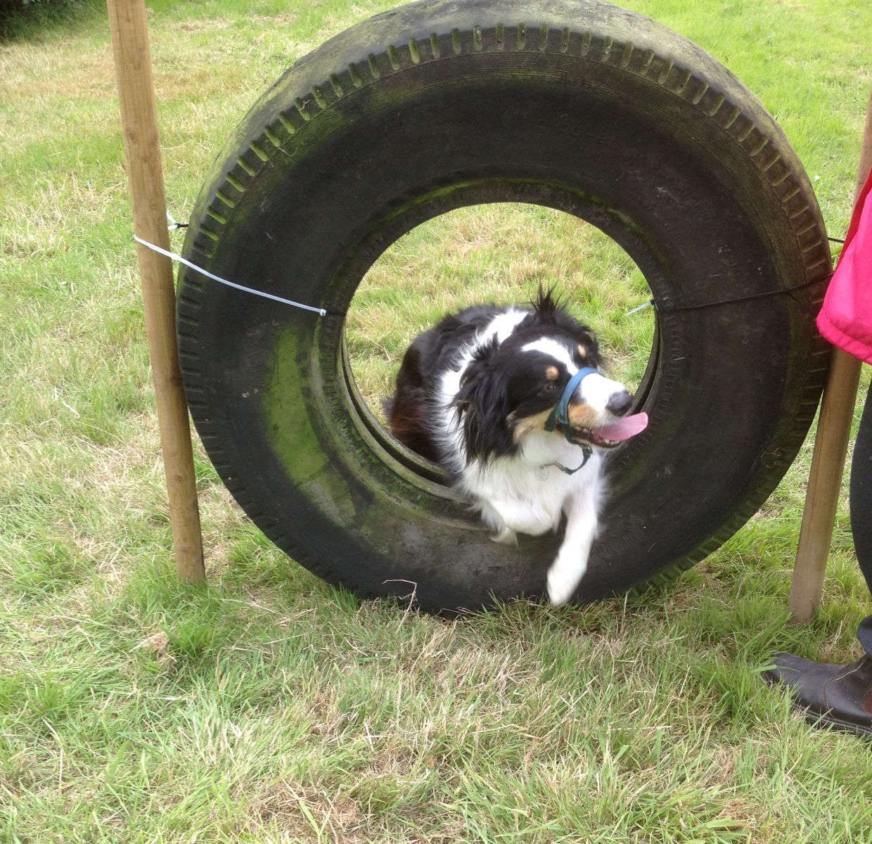 Sky trying out the tyre obstacle